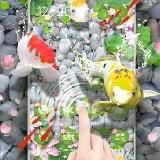Élénk Koi hal 3D téma - élő háttérkép ( Android alkalmazások )