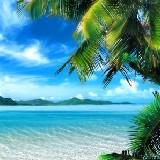 Trópusi Strandon Háttérképek ( Android alkalmazások )