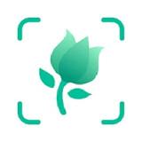 Növényhatározó - PictureThis (Android alkalmazás)